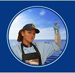 Blurb_vishandel