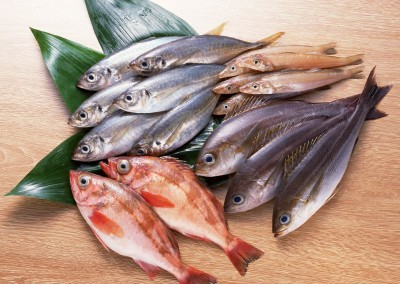 Vis & Gezondheid